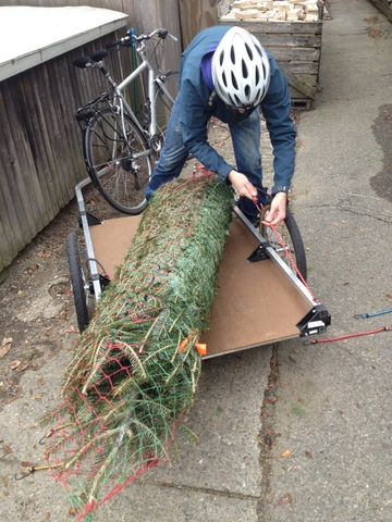 Christmas tree on the bike