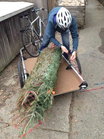 Christmas tree on the bike